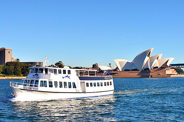 by the opera house